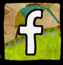 FB - Sudamérica Rural IPDRS