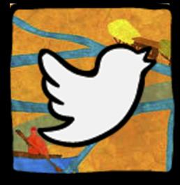Twitter - Sudamérica Rural IPDRS
